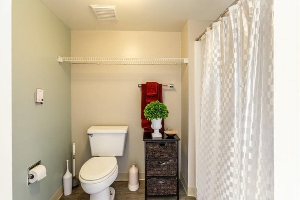 A decorated bathroom at Grand Villa of Sarasota in Sarasota, Florida