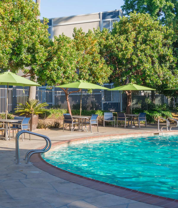 Gorgeous swimming pool area at Summer House Apartments in Alameda