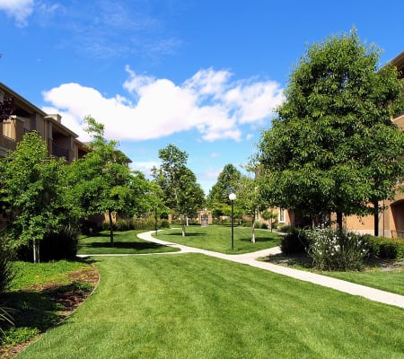 Apartment walkway surrounded by a lush landscape at Cross Pointe Apartment Homes in Antioch, California