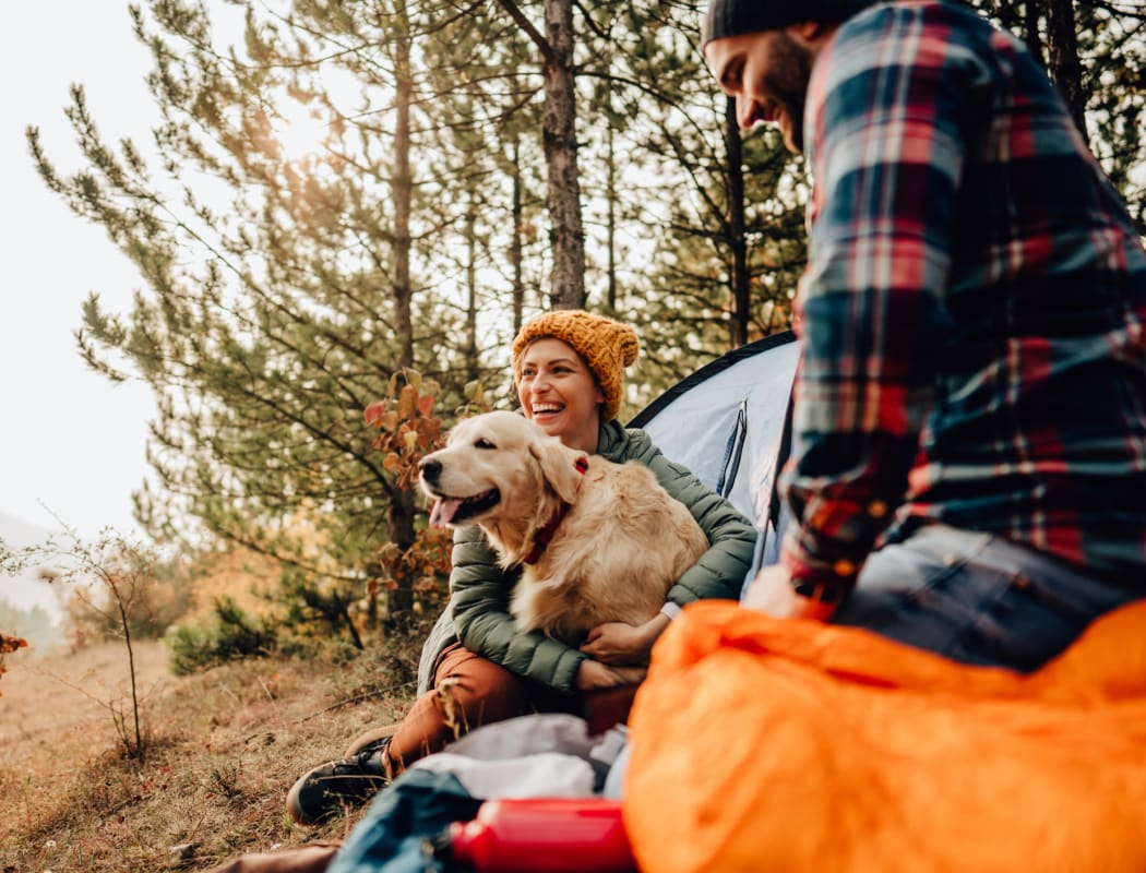Camping and hiking near The Wyatt Apartments in Fort Collins, Colorado