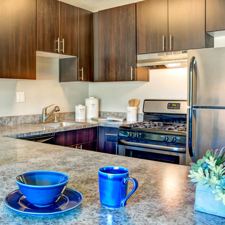 Gourmet kitchen with a gas range in a model home at Sofi Belmont Hills in Belmont, California