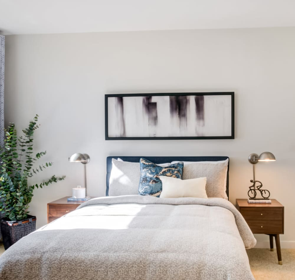 Model home's master bedroom with accent walls and plush carpeting at Sofi at Morristown Station in Morristown, New Jersey