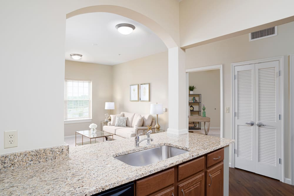 View from kitchen at Harmony at Chantilly in Herndon, Virginia