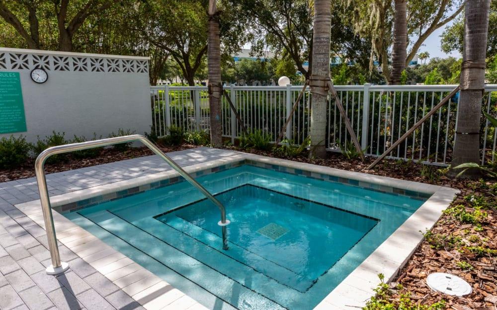 Link to amenities at 50 Paramount in Sarasota, Florida
