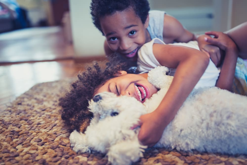 Children playing with their dog at Palette at Arts District in Hyattsville, Maryland