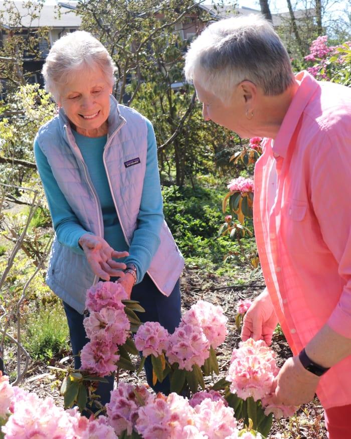 Two residents enjoying the garden at The Springs at Greer Gardens in Eugene, Oregon