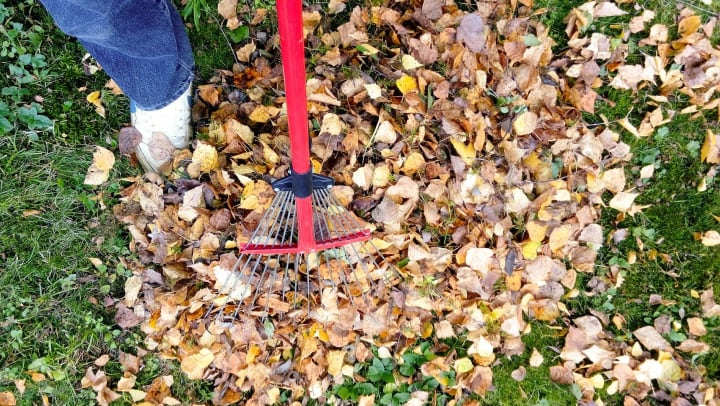 preparing your backyard for winter