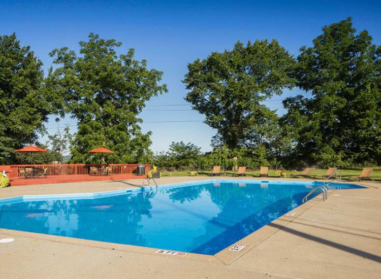 Swimming pool at Lakeshore Drive
