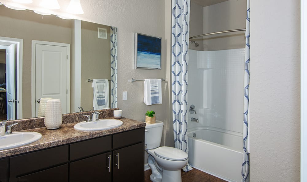 high end bathroom at Springs at Tapestry in Kissimmee, FL