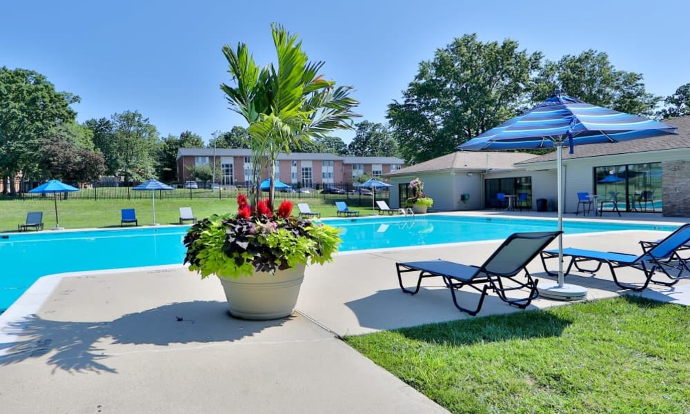 Beautiful Pool in Parkville, Maryland