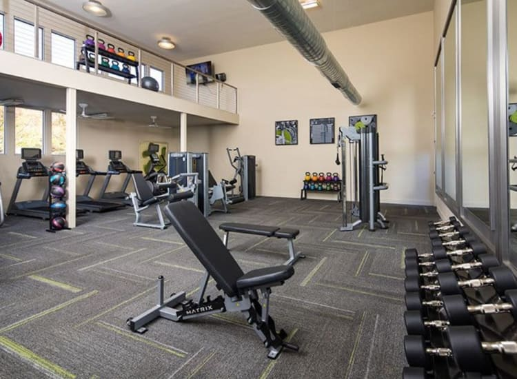 Well-equipped fitness center at Presley Oaks in Charlotte, North Carolina