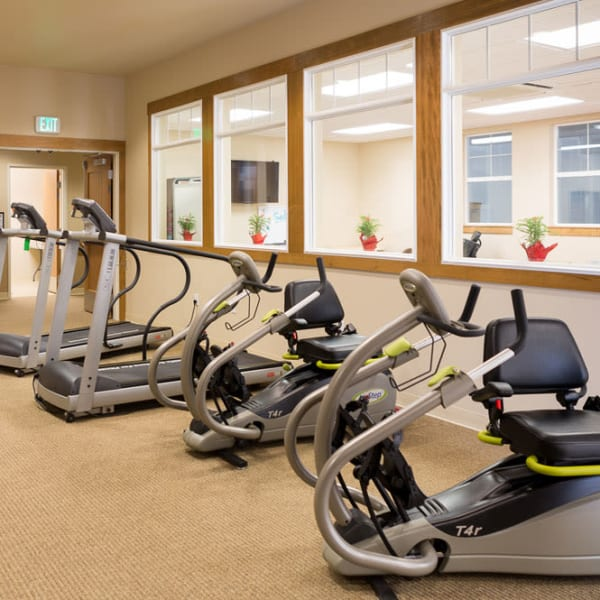 Exercise equipment lined up in a row in front of windows at Quail Park at Browns Point in Tacoma, Washington