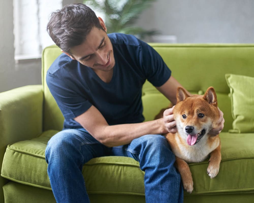 Happy dog and his owner in their apartment home at Olympus Corsair in San Diego, California