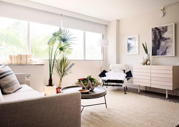 Urban Flats lounge