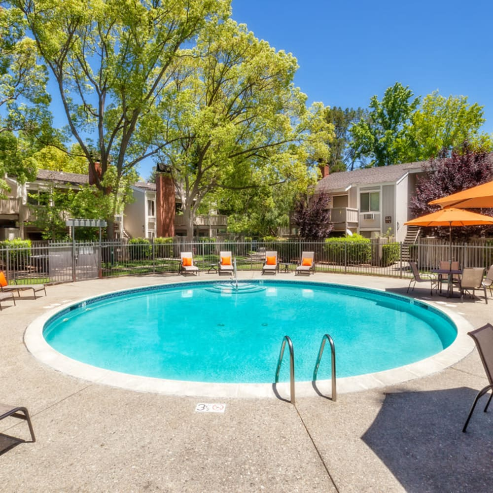 Pool with patio seating at Glenbrook Apartments in Cupertino, California