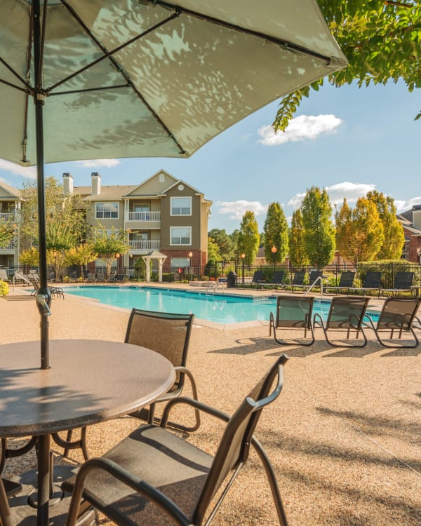 Beautiful palm trees by outdoor pool at Preston View in Morrisville, North Carolina