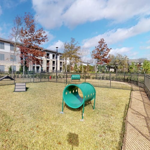 View virtual tour of our dog park at Opal at Barker Cypress in Houston, Texas