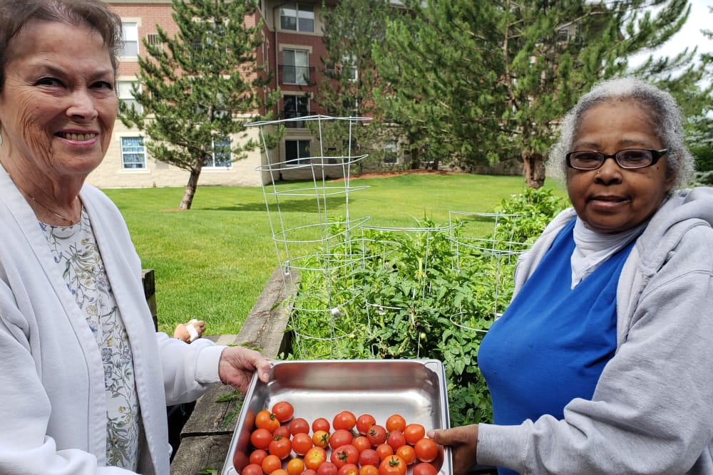 two seniors holding tomatoes