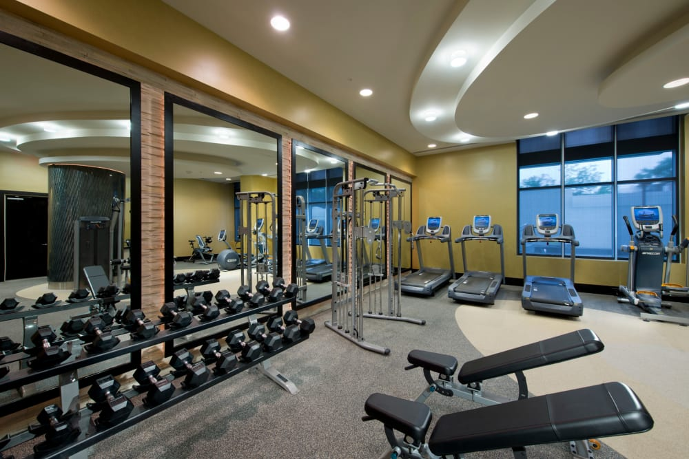 A fitness center with a weight rack at Solaire 1150 Ripley in Silver Spring, Maryland