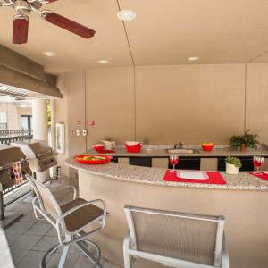 Features & Amenities at Chateau de Ville in Farmers Branch, Texas