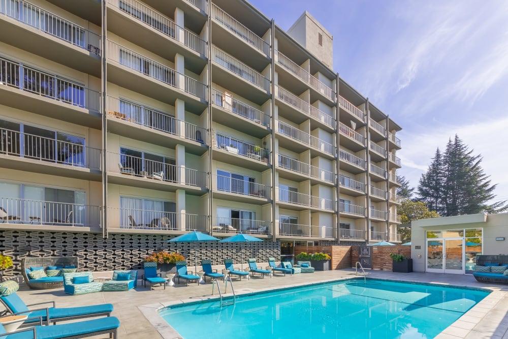 Luxury swimming pool at Mia in Palo Alto, California