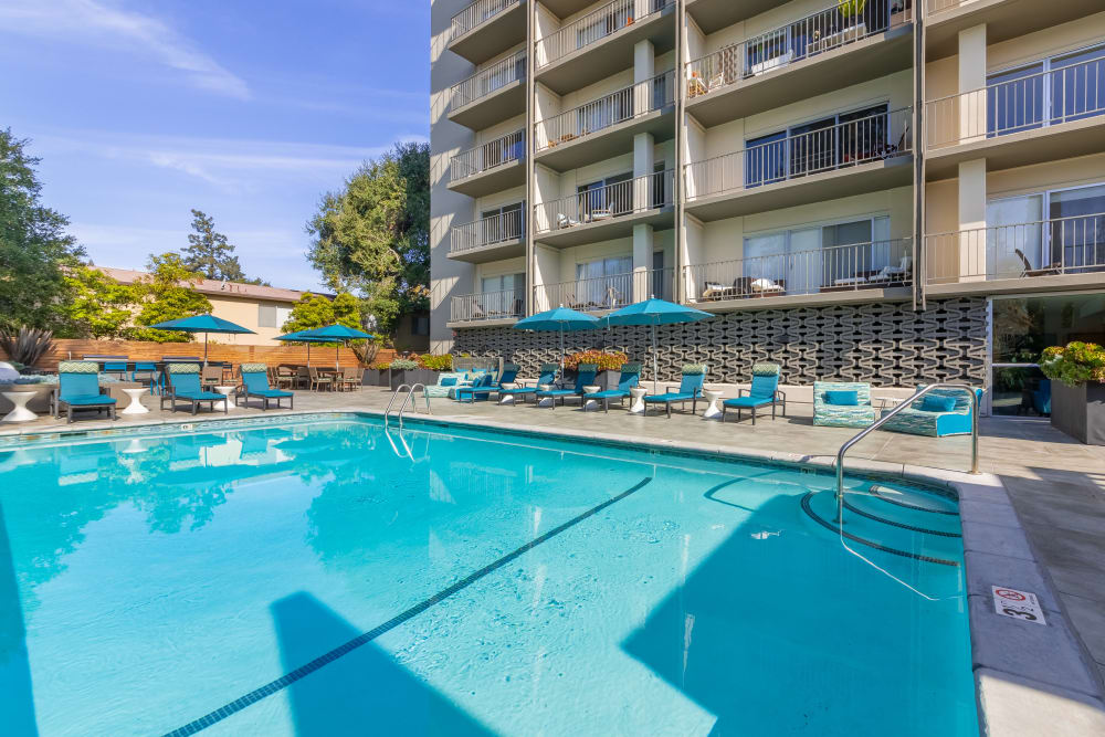 Our apartments in Palo Alto, California showcase a luxury swimming pool