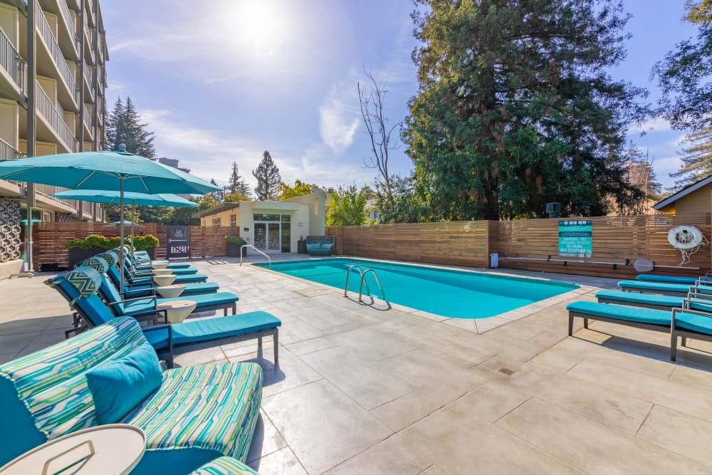 Enjoy a luxury swimming pool at Mia