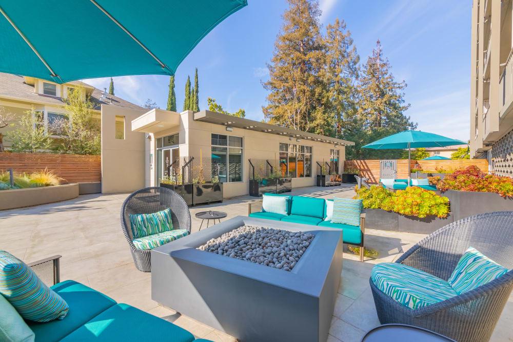 Community, outdoor fireplace at Mia in Palo Alto, California