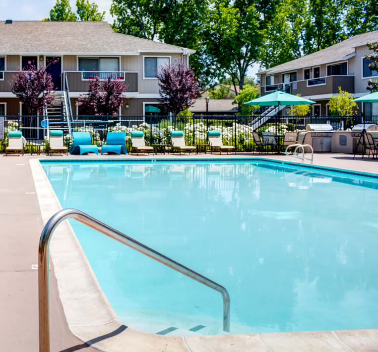 Sparkling swimming pool on a gorgeous day at Sofi Berryessa in San Jose, California