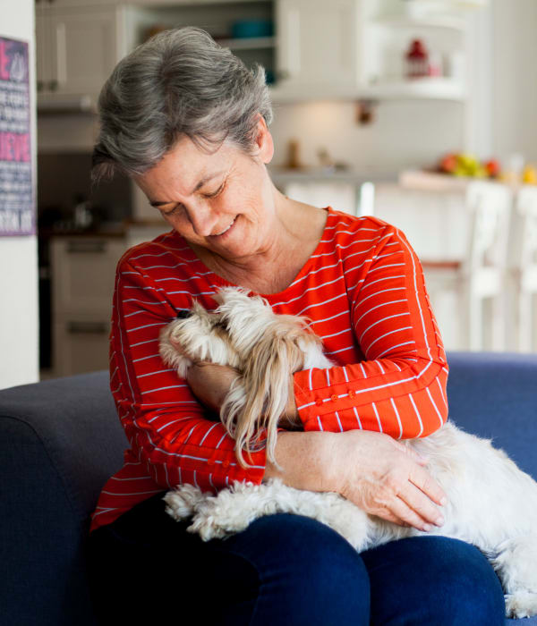 A small dog living with a resident at Alura By Inspired Living in Rockledge, Florida
