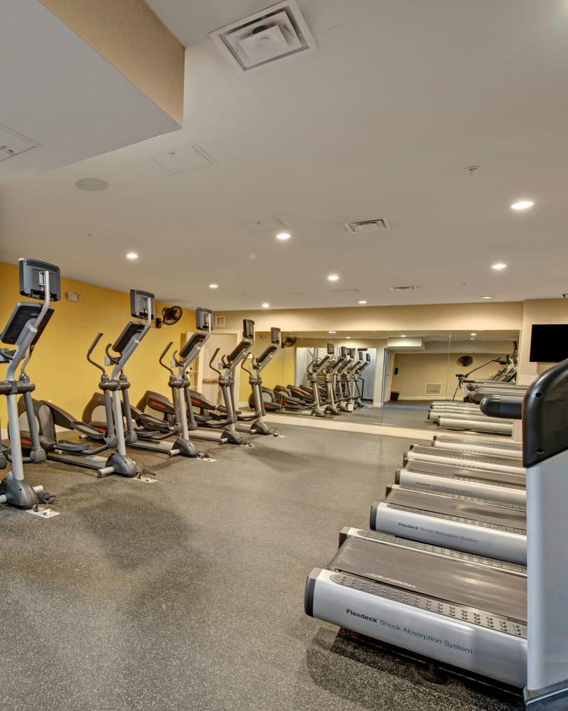 Fabulous fitness center for residents at Dulles Greene in Herndon, Virginia