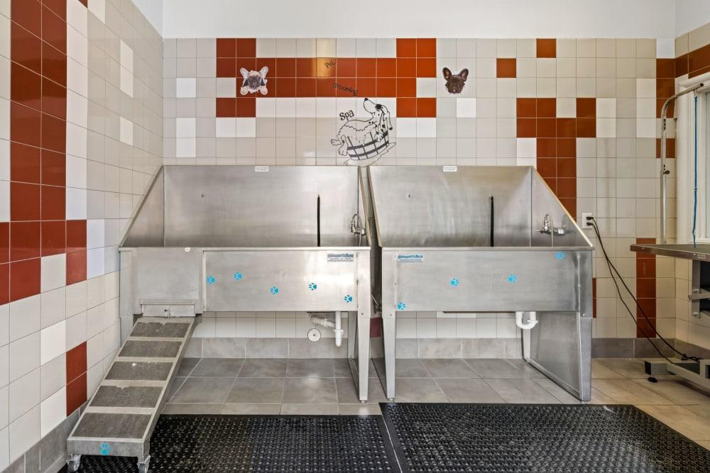 Pet wash station at The Parc at Greenwood Village in Greenwood Village, Colorado