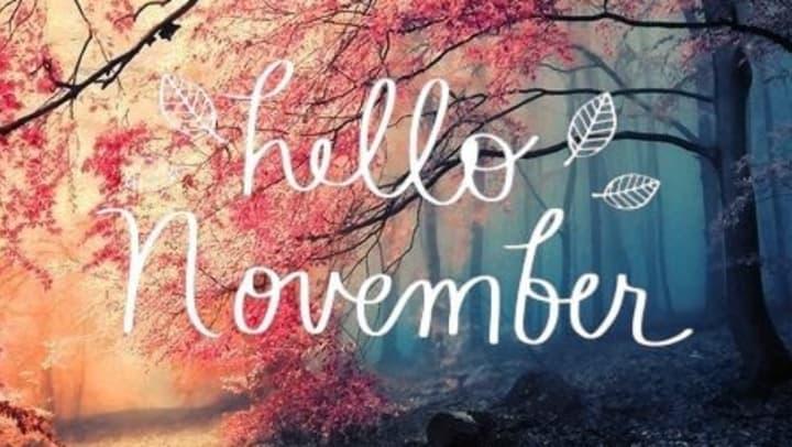 "Image result for Welcome November"""