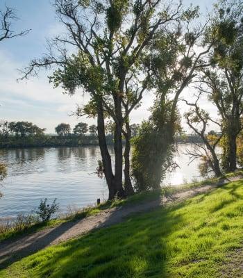 Sacramento river near  Shore Park at Riverlake in Sacramento, California