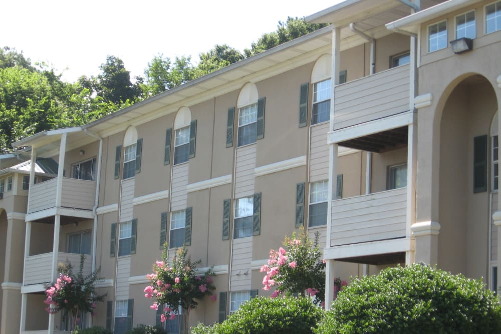 Beautiful apartments at The Abbey at Regent's Walk in Homewood, AL