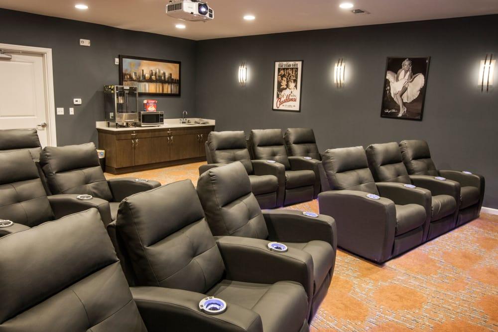 Watch movies with Avenida Partners, LLC