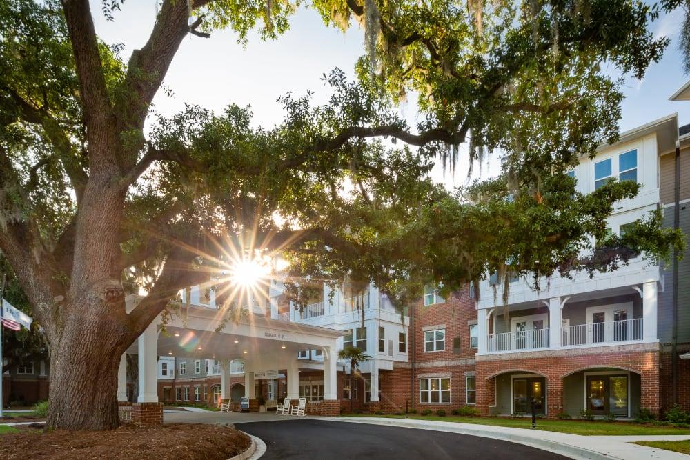 Front entrance oak tree draped with spanish moss at Harmony at Savannah in Savannah, Georgia