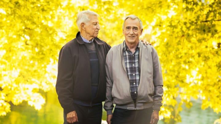 Same sex elderly couple
