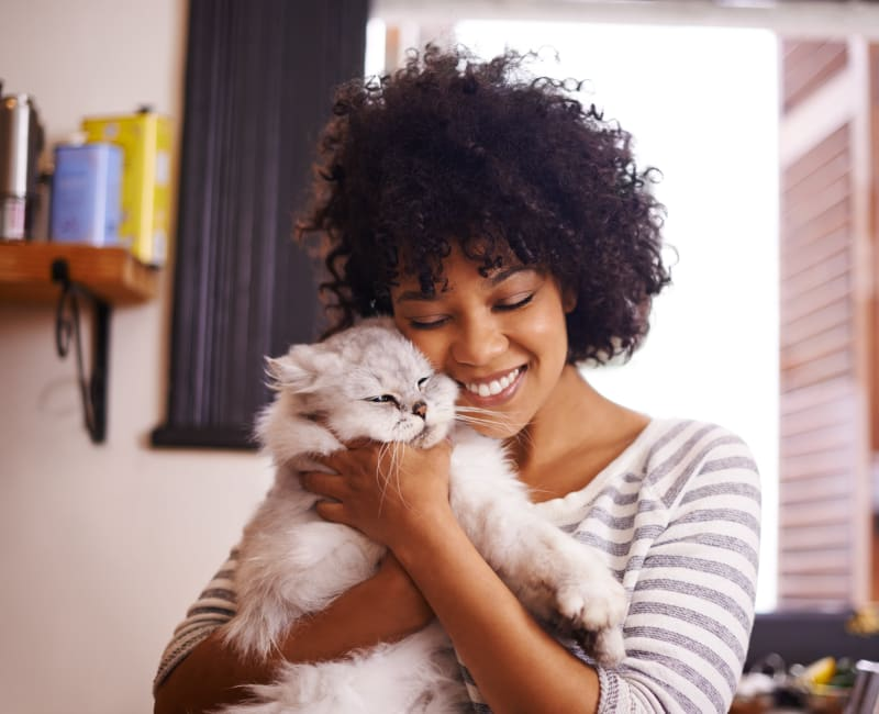 Resident enjoying some time with her cat at Westchester West in Silver Spring, Maryland