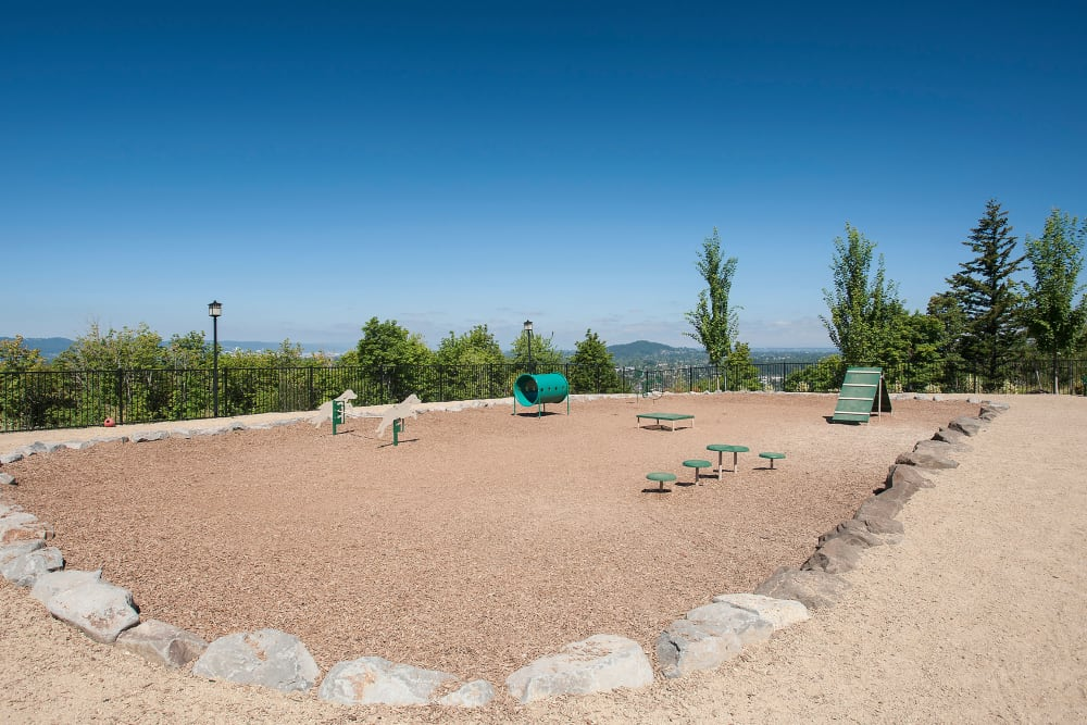 Spacious dog park for the fur babies to run around at Altamont Summit in Happy Valley, Oregon