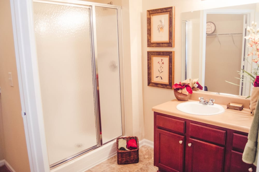 Bright bathroom at Lullwater at Saluda Pointe in Lexington, South Carolina