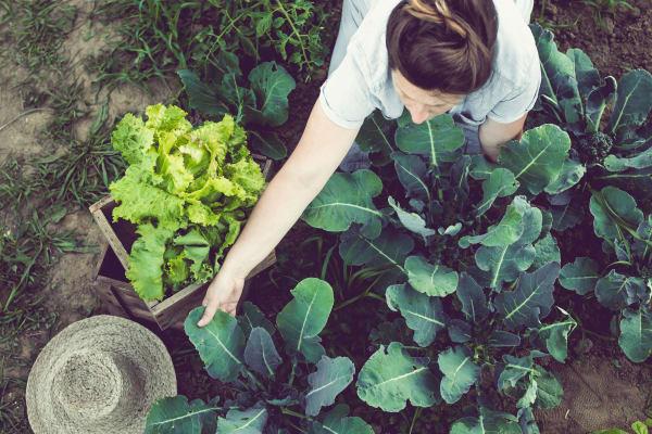 Resident tending to her garden at Grant Park Village