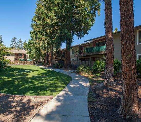 1 & 2 Bedroom Apartments For Rent In Walnut Creek, CA