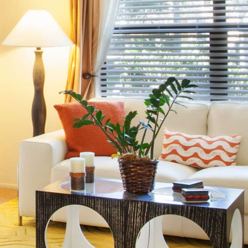 View floor plans offered at Cypress Point Apartments