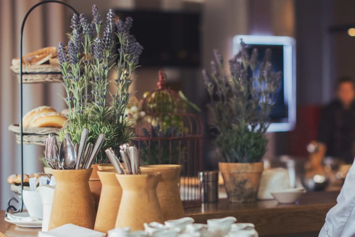 Pots of lavender at {{location_name}}