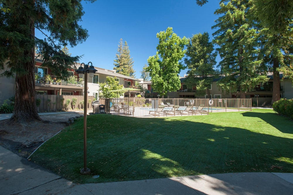 Large grass lawn for summer picnics at Flora Condominium Rentals in Walnut Creek, California
