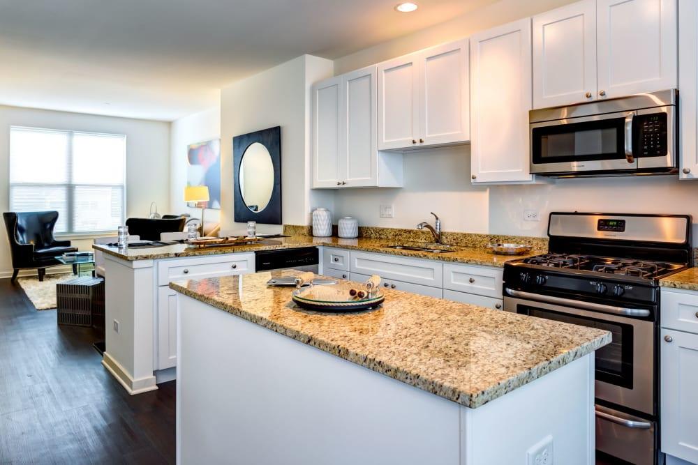 Artistic kitchens at The Oaks Of Vernon Hills in Vernon Hills, Illinois