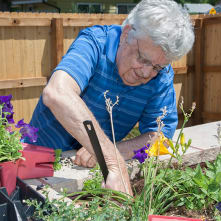 Adult day services at Clermont Park
