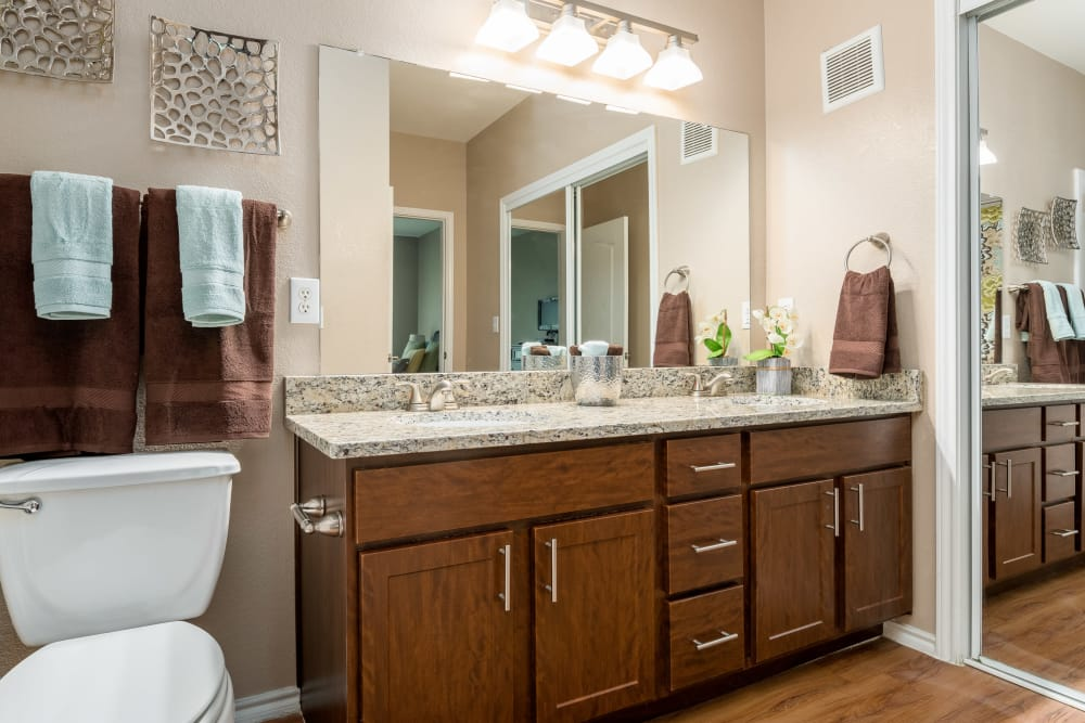 Luxury bathroom at El Lago Apartments in McKinney, Texas