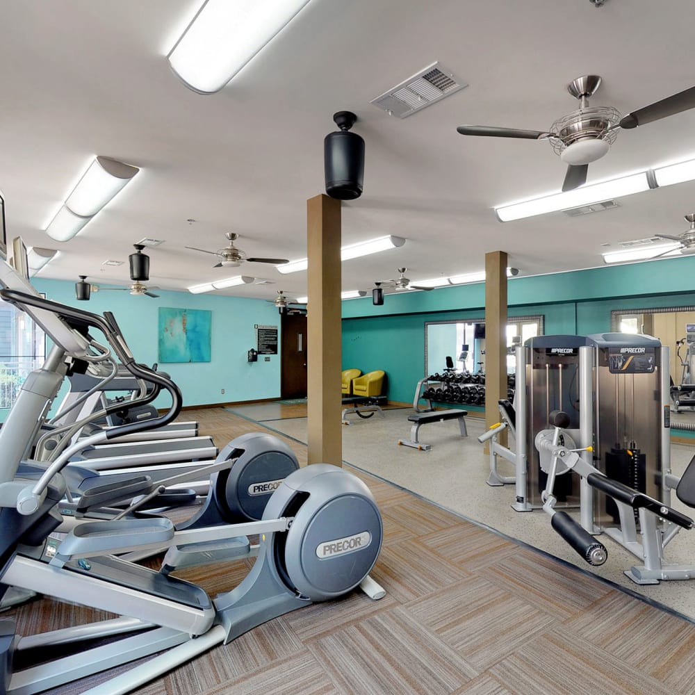 Ample cardio machines and exercise equipment in the fitness center at Oaks 5th Street Crossing at City Station in Garland, Texas